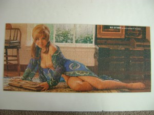 Playboy Playmate Puzzle 1320 AP104 Miss September Shay Knuth 7